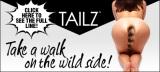 Tailz Banner Model 491 x 221