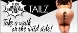 Tailz Banner Model 570 x 242