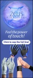 Zeus Fell The Power Web Banner 170 x 406