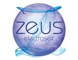 Zeus Logo White 390 x 300